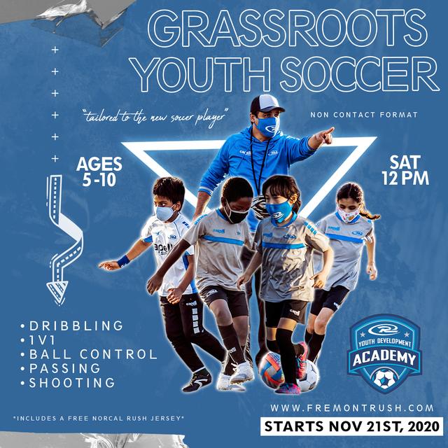 Grassroots-2020-v3