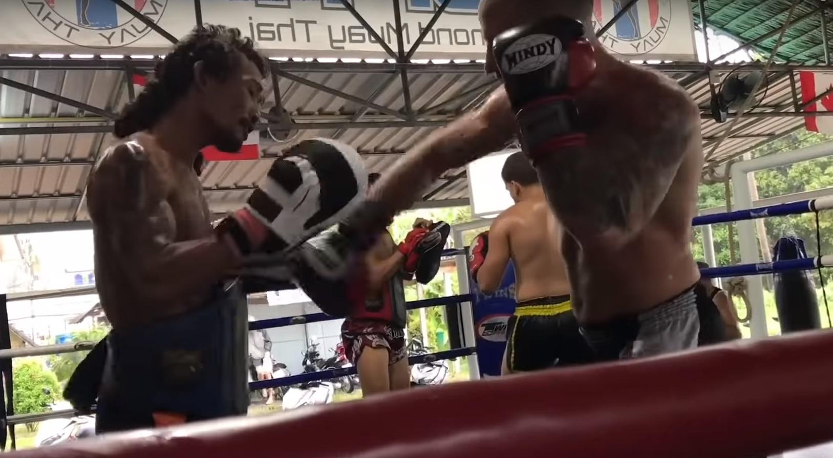Боксерские перчатки Windy Prolinе КОЖА Таиланд в Украине
