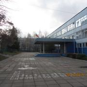 IMG-6750