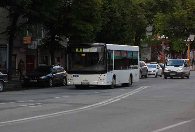 IMG-8694.jpg