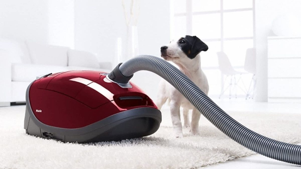 Are Vacuum Cleaners Good for Dog Hair? What to consider?
