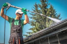 Professional Roof Cleaning Miami.jpg