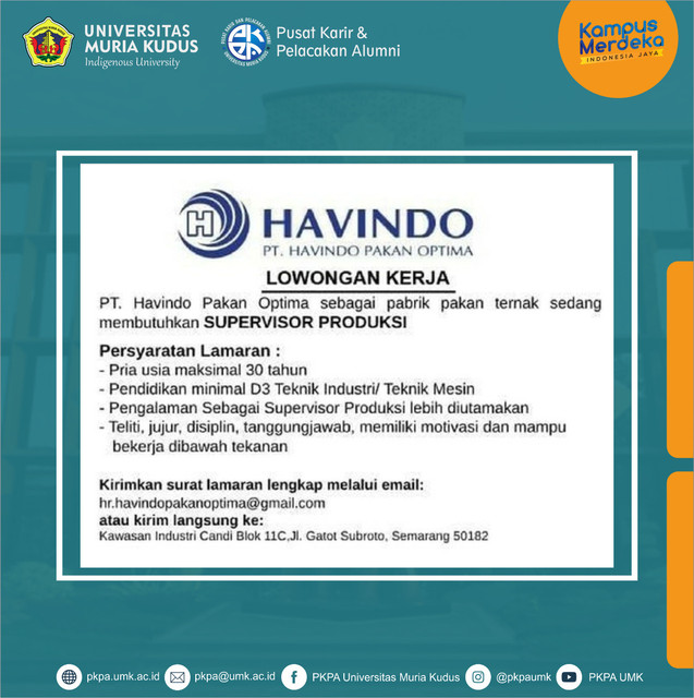 havindo2
