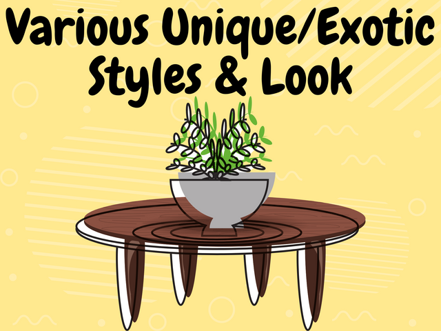 Various-Unique-Exotic-Styles-Look