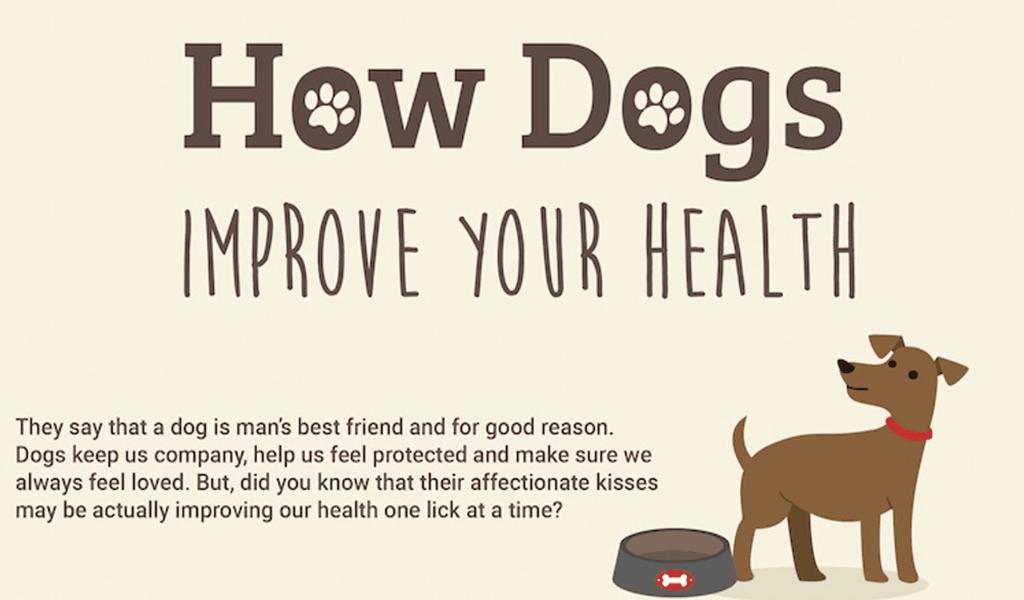 Pet Health Insurance VET Market