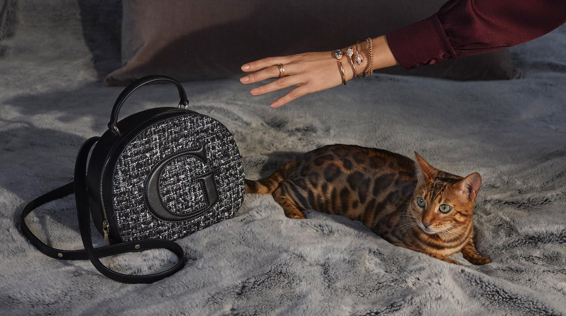 Девушка, кошка и модные сумочки / фото 04