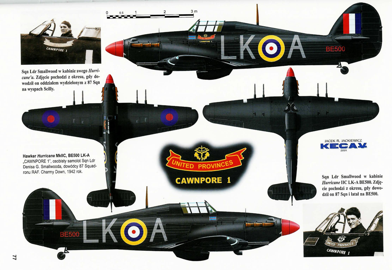 Hurricane-IIc-RAF-87-Sqn-LKA-Ian-Gleed-B