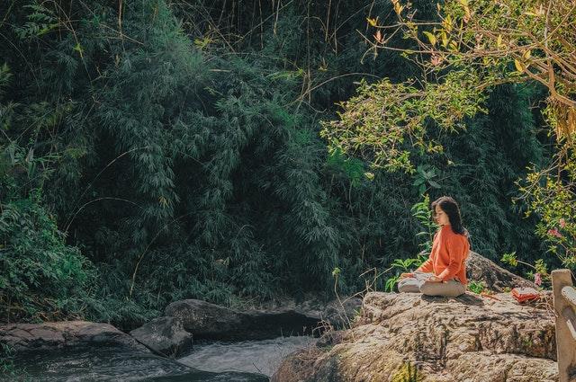 https://i.ibb.co/4SS2cDK/meditation-in-jungle.jpg
