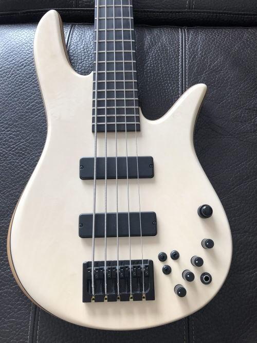 Pessoal, finalmente comprei meu baixo! Um Tagima Woodstock Jazz Bass TW73, mas... - Página 2 Holly