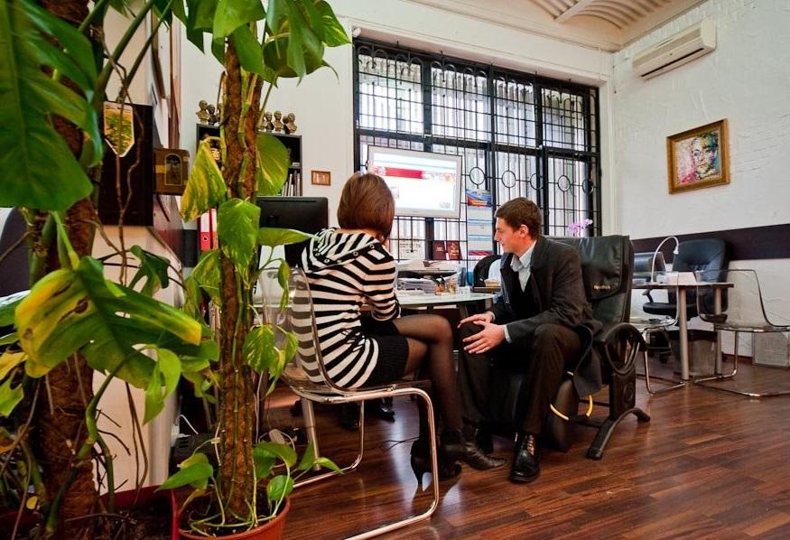 растения в офисе