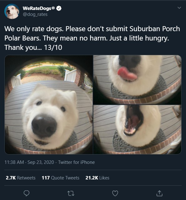 IMAGE(https://i.ibb.co/4ZhBjPC/we-rate-polar-bears.jpg)