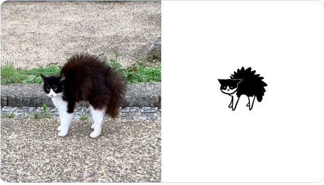 嚇到炸毛的貓 Image