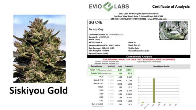 Lab-Report-Siskiyou-Gold