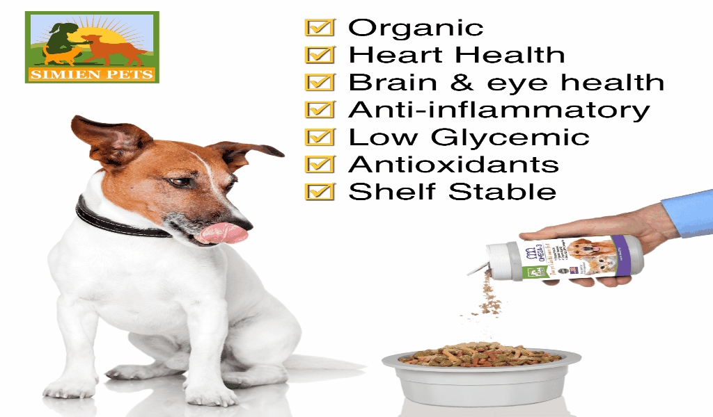 The Pet Health Pharmacy VET Market