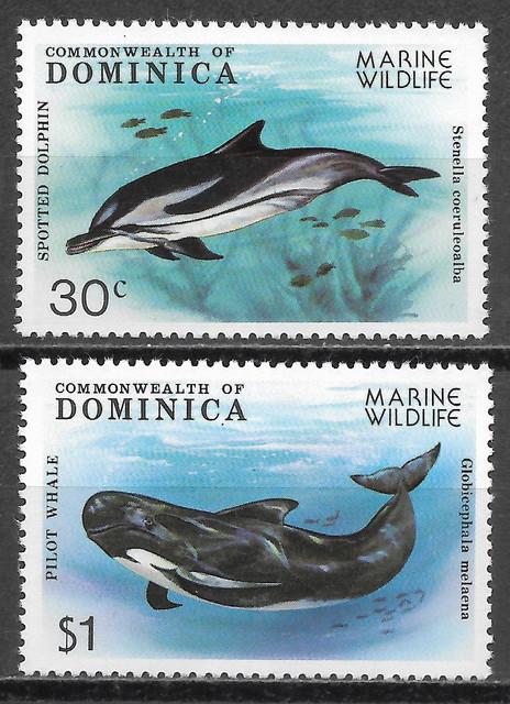 Wale-Dominica