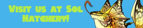 Sol-Hatchery-banner.jpg