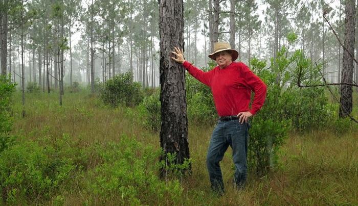Люди, которые выращивают леса в одиночку