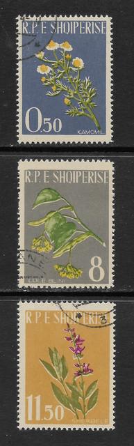 Albanien 654