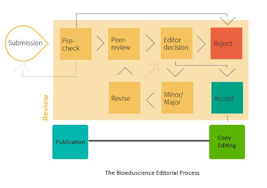 Editorial-Proses-2
