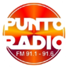 Punto Radio_trasp