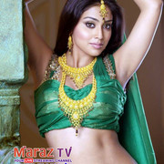 Shriya-Saran-Hot-And-Sexy-Navel-Photos-12