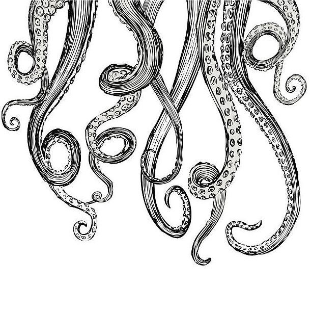 Hand-Drawn-Vector-Tentacles-in-a-rough-wood-cut-style-each-tentacle-is-a-separate-illustration-and-c