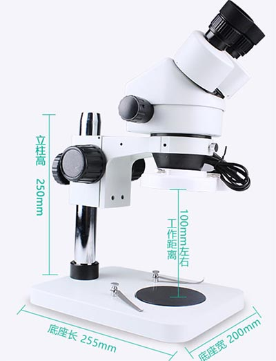 stereomicroscope parameter