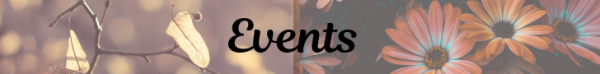 MJ-Banners-Events.png