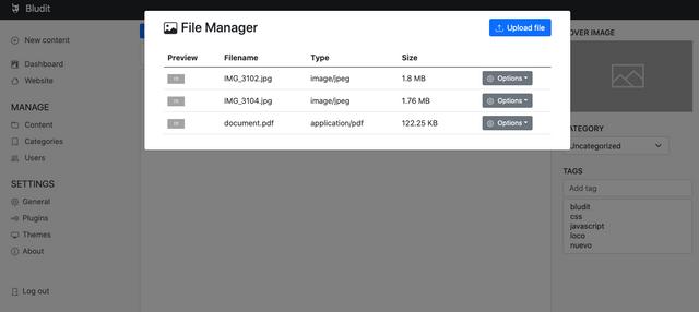 bludit-v4-file-manager