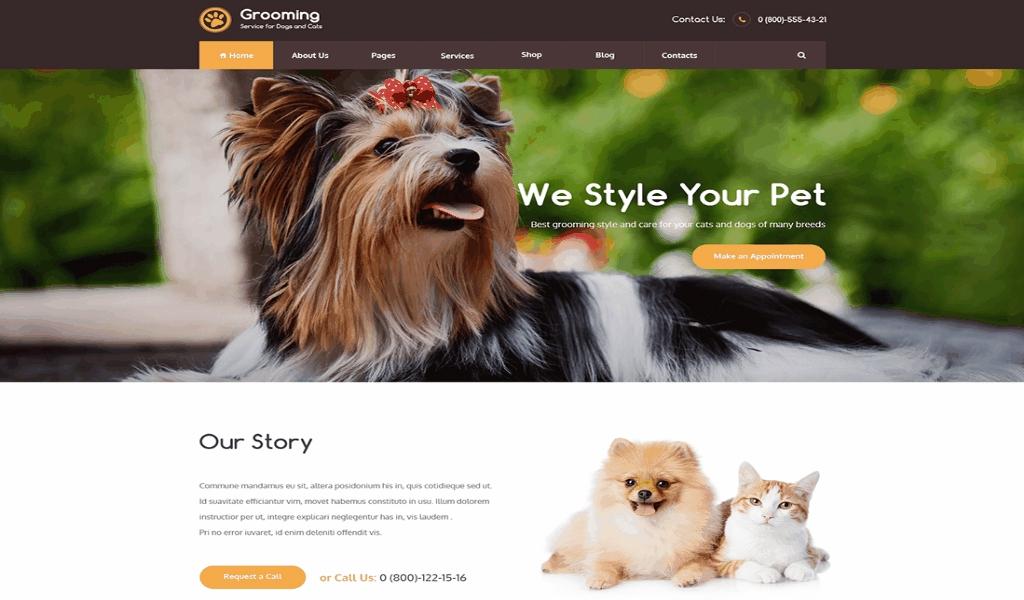 Build An Official Pets Store Studio