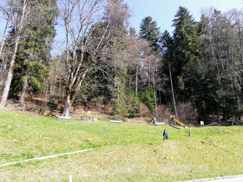 Playground at the start