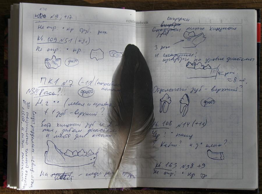 Сторінка з польового щоденника