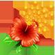 https://i.ibb.co/5MR3899/Pollen-Flower-icon.png