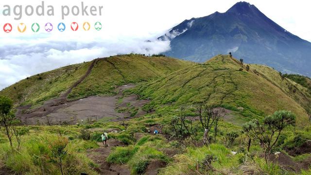 3 Kasus Terbaru Hilangnya Pendaki di Rimba Gunung Indonesia