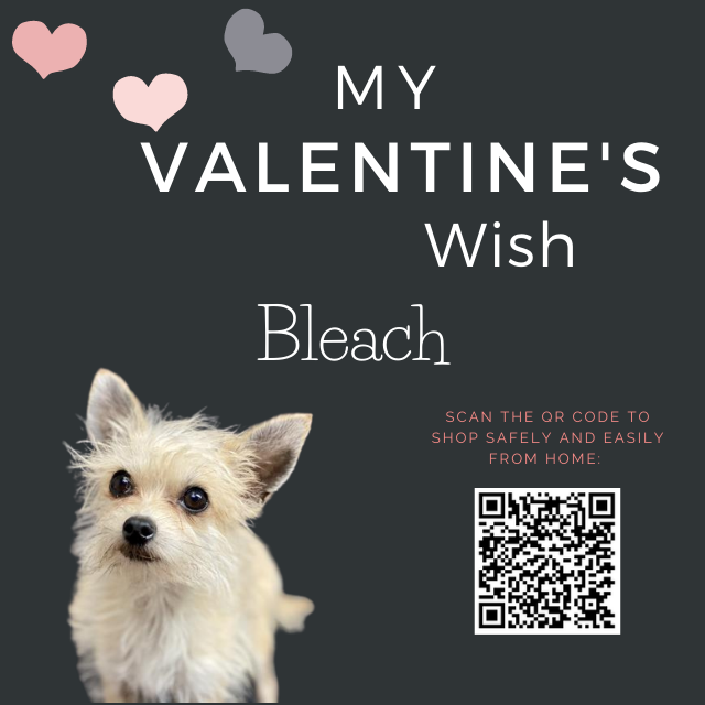 Valentines-Wishes-023.png