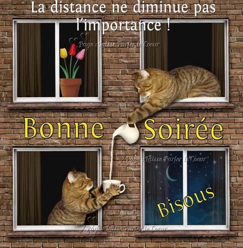 bonne-soir-e