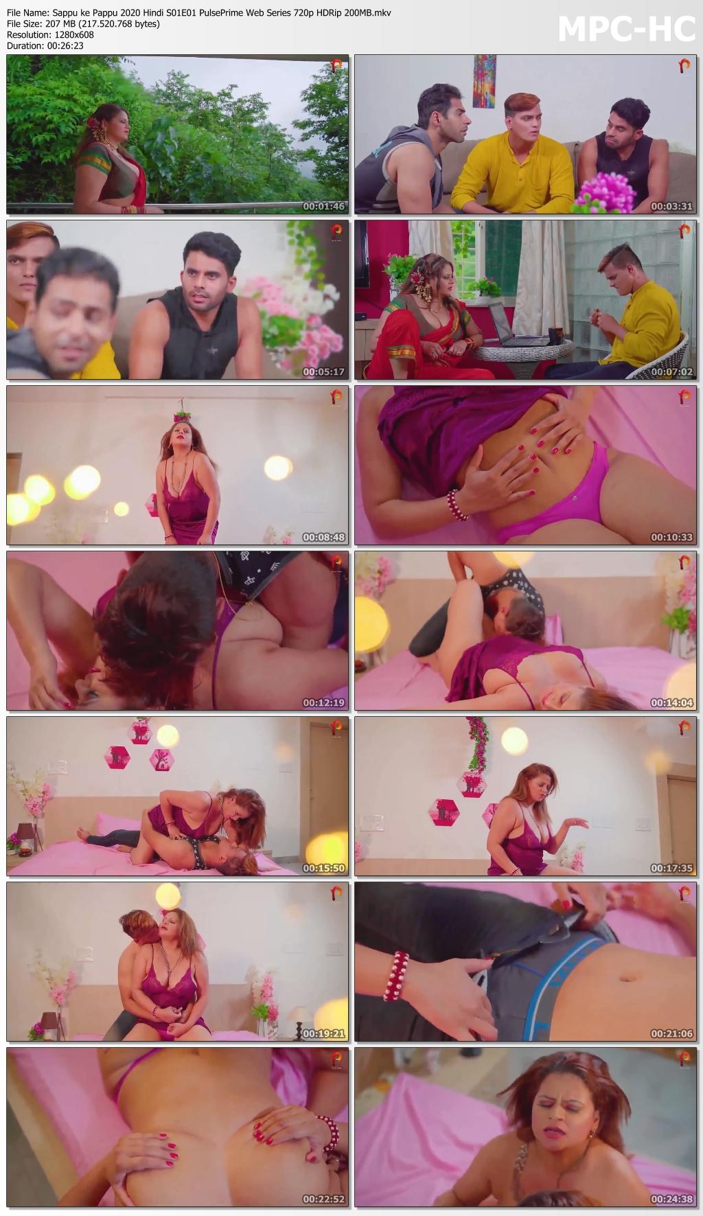 Sappu-ke-Pappu-2020-Hindi-S01-E01-Pulse-Prime-Web-Series-720p-HDRip-200-MB-mkv-thumbs