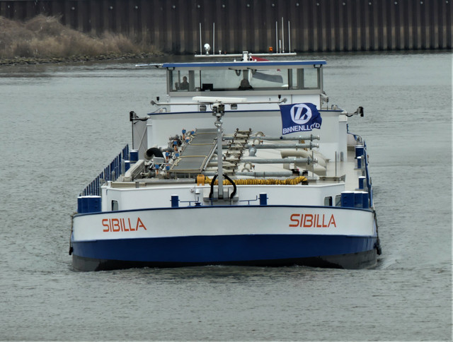 Sibilla-3-10-03-2021-sluis-Lith-2