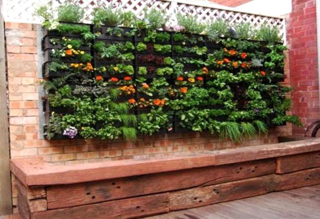 The Green House Garden Design