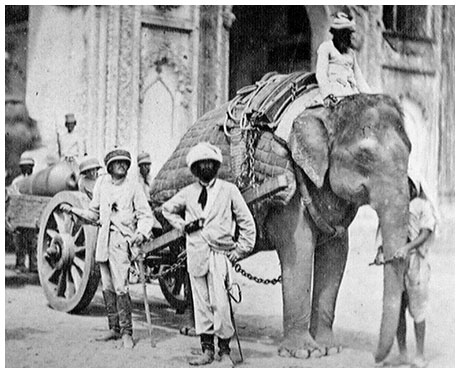 https://i.ibb.co/5n52Q0y/indian-sepoy-mutiny-rebellion-uprising-1857-rare-photos-75.jpg