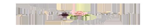 https://i.ibb.co/5rjYV0V/346-3468808-separadores-en-png.png