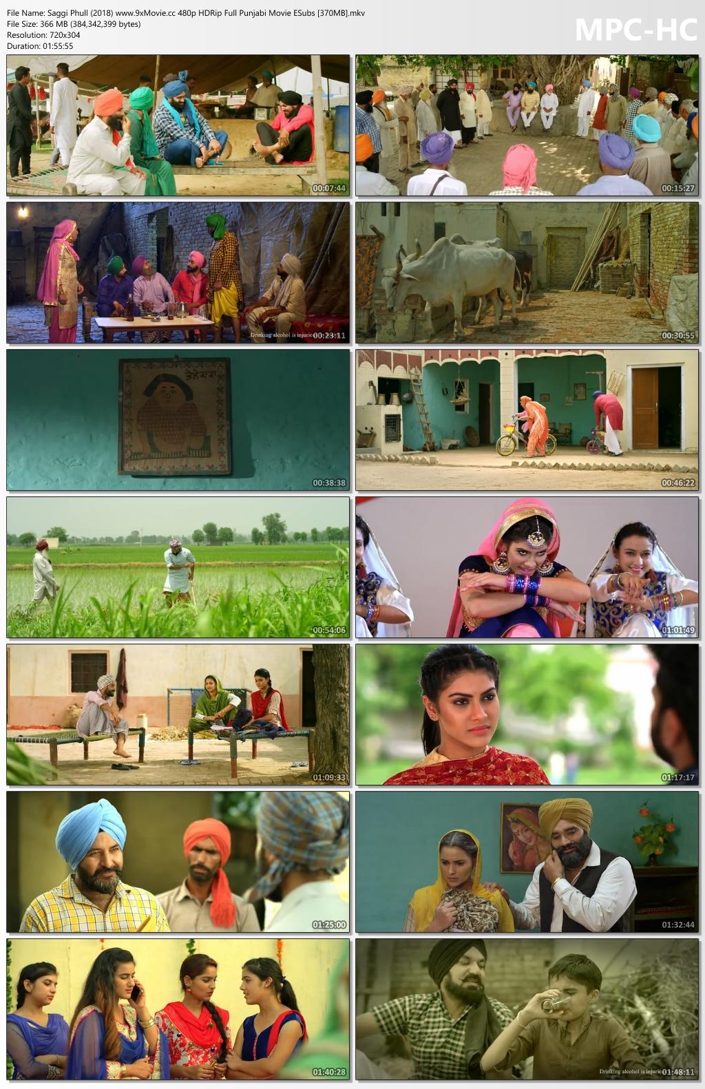 Saggi-Phull-2018-www-9x-Movie-cc-480p-HDRip-Full-Punjabi-Movie-ESubs-370-MB-mkv