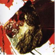 Bloodrock70-Bloodrock-book-1