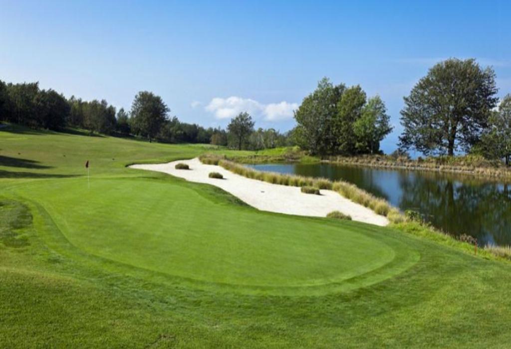 Official World Golf