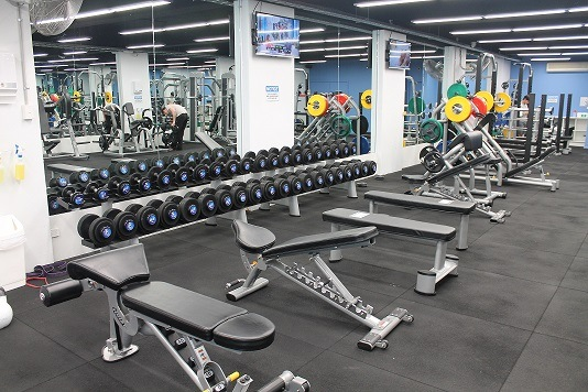 https://i.ibb.co/6Db7rYL/Gym-floor-Free-weights-area.jpg
