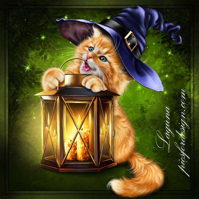 kitty-with-lantern.jpg
