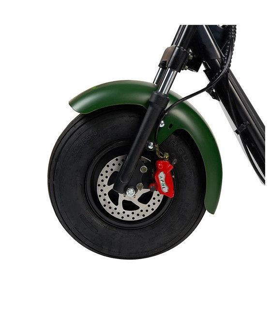 maverick-elite-citycoco-de-ultima-tecnologia-motor-1000w-con-1-o-2-baterias-diseno-verde-2