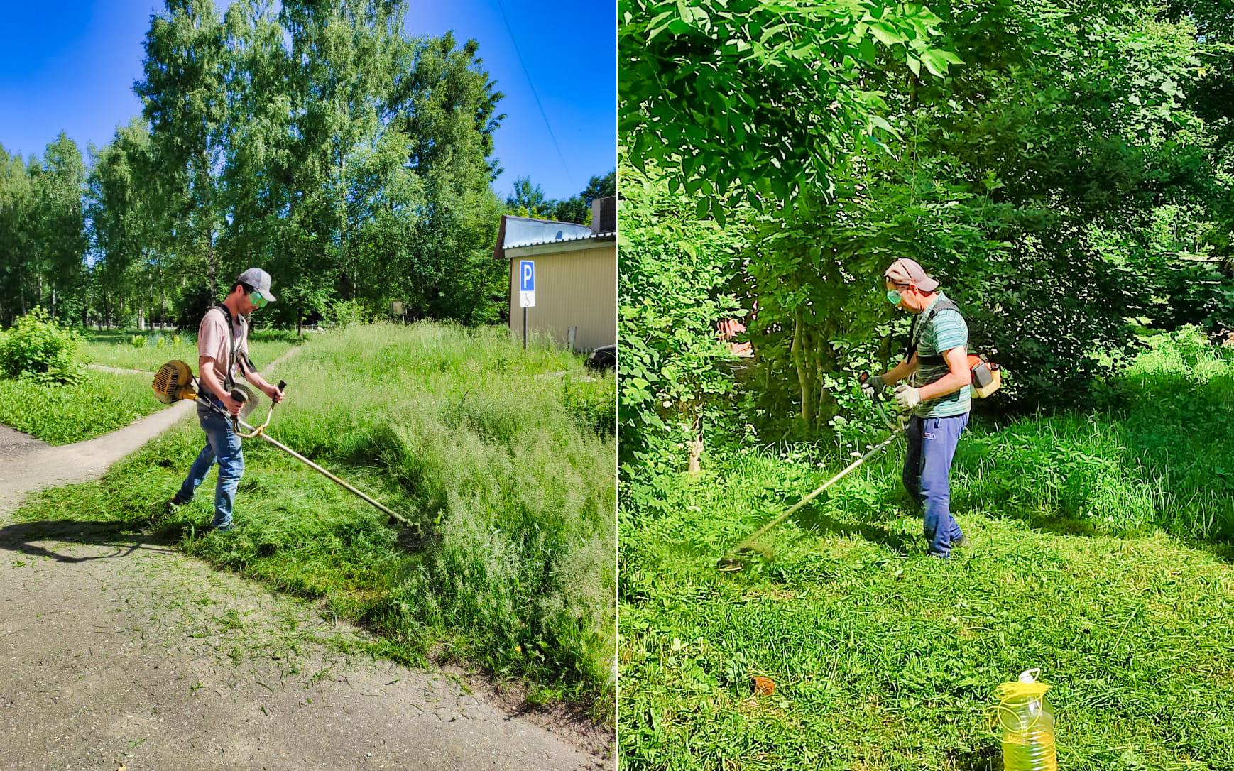 Ежедневно окашиваем траву на придомовых территориях
