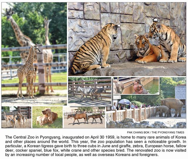 [Bild: Pyongyang-Zoo-2019-09-PT.png]