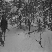 Dyatlov pass 1959 search 28